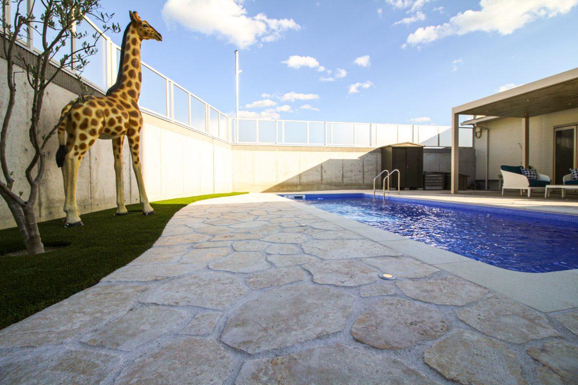 プールを眺めるキリン